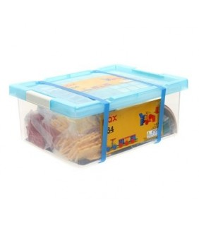 264pcs PAX (With Plastic Container)